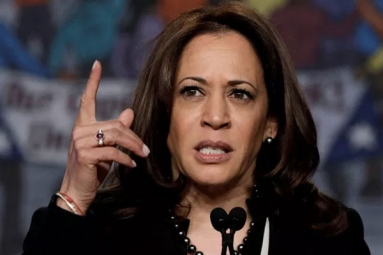 Kamala Harris Invokes Indian Heritage in Response to Trump's Immigration Plan